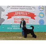 """24 25.09 2016 """"Кубок Природы"""",Мемориал Соколинского"""