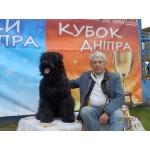 13-14.05.2017 Днепропетровск 2*САС FCI